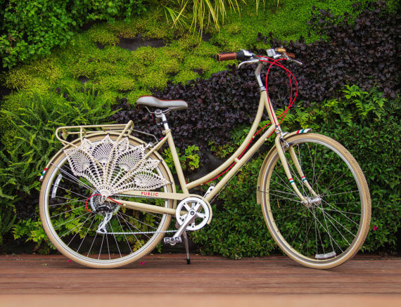 beach cruiser accessories